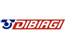 DIBIAGI TRANSP. INTERNACIONAL SA